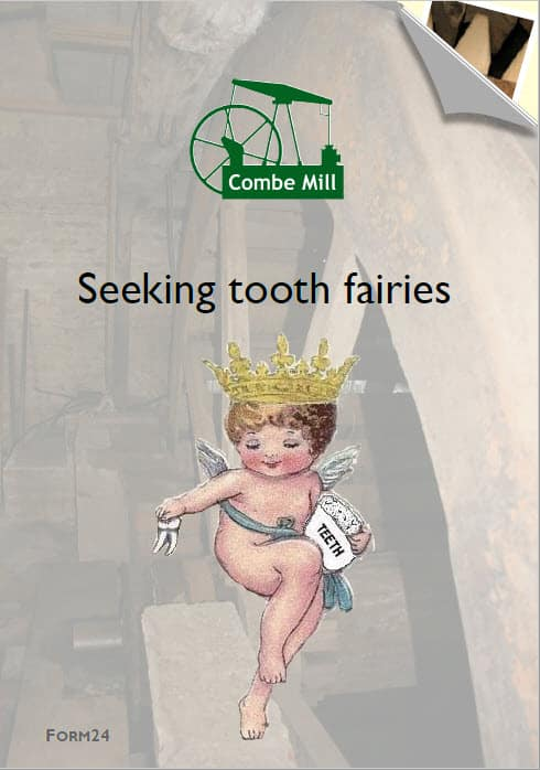 Tooth Fairy Sponsorship